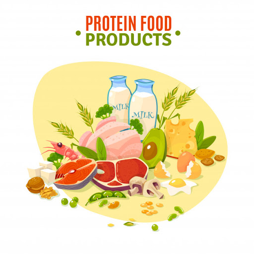 protein requirement per day